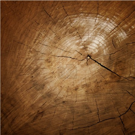 Wood texture Tree rings,  sawing wood