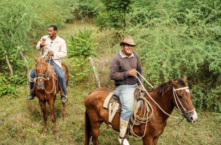 Cuban Cowboys, Gaucho and their Horses