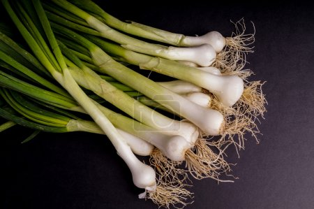 Fresh Organic spring onion