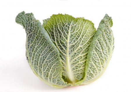 Photo for Healthy organic Savoy Cabbage isolated on white - Royalty Free Image