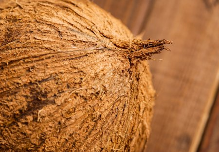 Whole coconut, close up