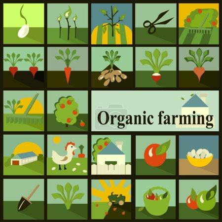 Set of icons. Organic farming