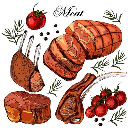 Hand drawing meat.