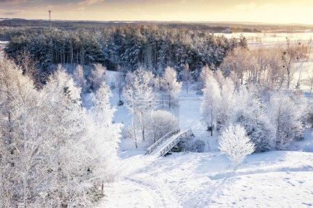 Photo pour Panorama de l'hiver. Congelé des arbres, les buissons et les Prairies. Vue aérienne. Mazurie, Pologne. - image libre de droit