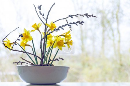 spring decoration, daffodils and pussy willow in a ceramic bowl