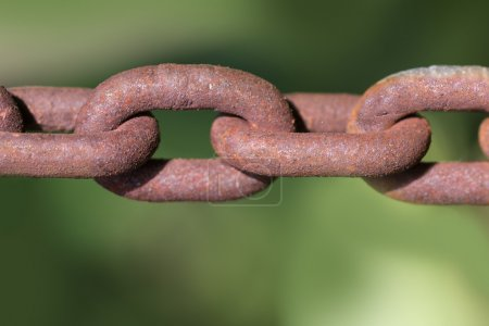 Rusty steel chain against a blurry green background
