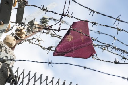 Passport folded as a paper plane hanging in a barbed wire