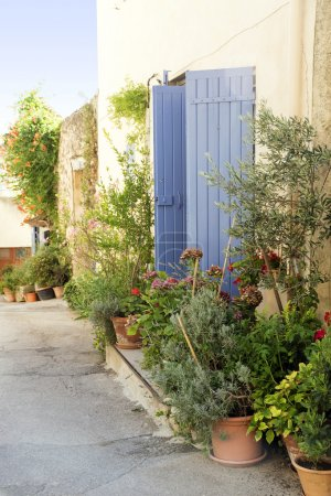 Pot garden in a narrow street, typical in southern Europe, Ansou