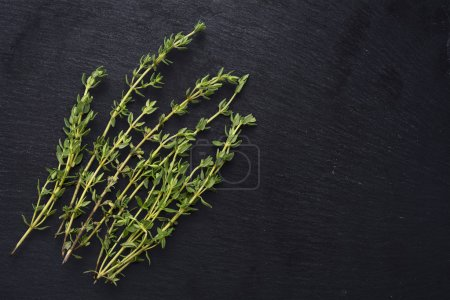 fresh green thyme on a dark slate background