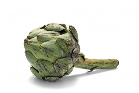 Organic artichoke isolated on a white background