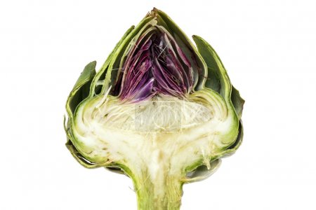 Half artichoke, showing the heart and choke under the leaves, is