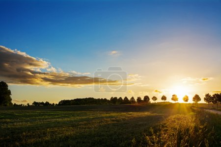 Sunset over a idyllic country landscape with fields and trees