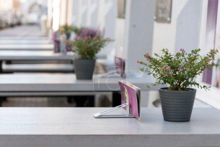 Photo pour Restaurant outdorr avec tables de bar grises et décoration de fleurs pourpres roses dans la ville, mise au point sélectionnée, profondeur de champ très étroite, espace de copie dans le fond flou - image libre de droit