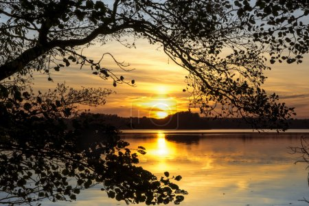 Sunset over the lake, framed by a branch in a natural arch