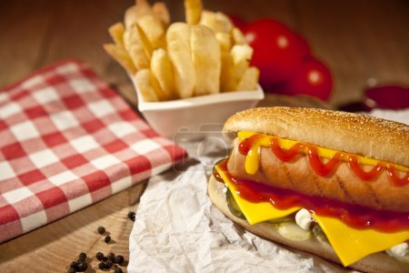 Hot Dog with fries and cheddar cheese concept background