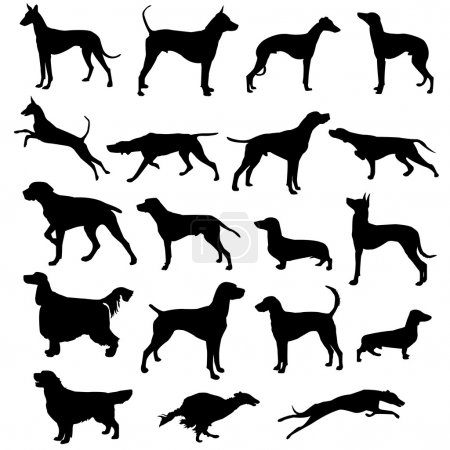 Set of silhouettes of hunting dogs