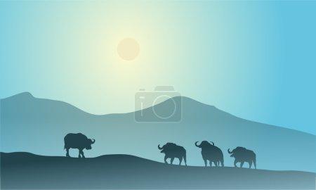 Bull silhouette in mountain scenery