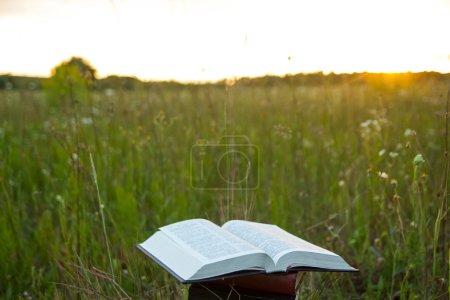 Opened hardback book Bible against sunset