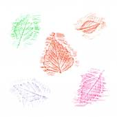Set of hand-drawn leaves