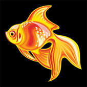 Collection of mascots: goldfish