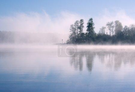 Lake forest fog