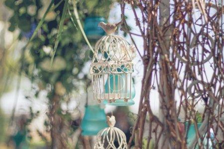 Photo pour Blanc cage décorative avec de belles fleurs de cellules en suspension - image libre de droit