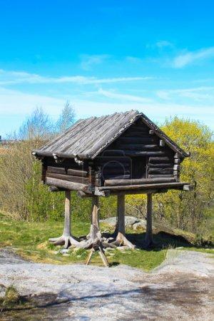 Fairy house on chicken legs