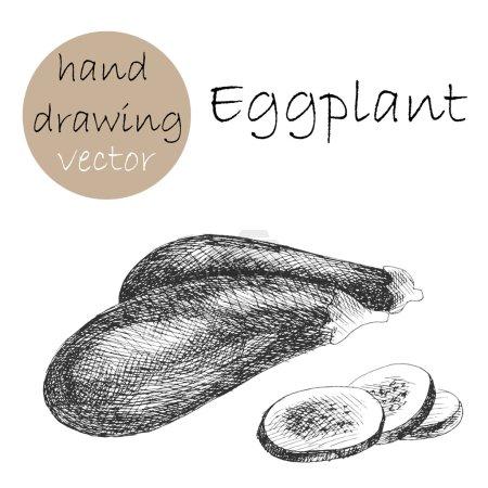 Hand Drawn eggplant. Monochrome sketch.
