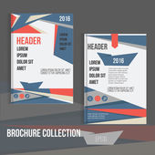 Vector brochure cover design templates with abstract geometric linear connection  backgrounds for your business.