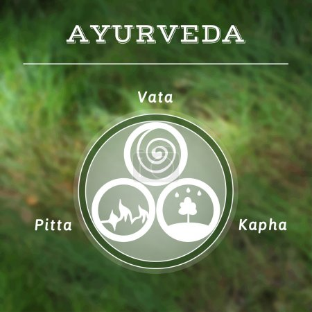 Illustration for Ayurveda vector illustration. Ayurveda doshas. Vata, pitta, kapha doshas in white and green colors. Ayurvedic body types. Infographic. Healthy lifestyle. Harmony with nature. Blurred photo background. - Royalty Free Image