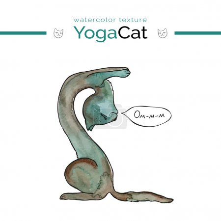 Cute cat in grey and green colors in yoga pose