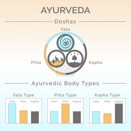 Illustration for Ayurveda vector illustration. Ayurveda doshas: vata, pitta, kapha. Ayurvedic body types. Ayurveda infographic. Healthy lifestyle. Harmony with nature. Alternative medicine. Indian medicine. - Royalty Free Image