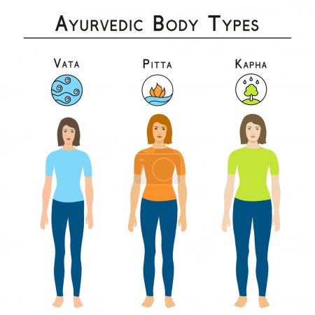 Illustration for Ayurveda vector illustration. Ayurveda doshas. Ayurvedic body types, vata, pitta, kapha. Infographic with women body types. Alternative medicine. Indian medicine. - Royalty Free Image