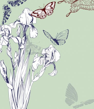 Illustration for Vintage Greeting card with blooming irises and with butterflies. With place for your text. (Use for Boarding Pass, birthday card, invitations, thank you card.) Vector illustration. - Royalty Free Image
