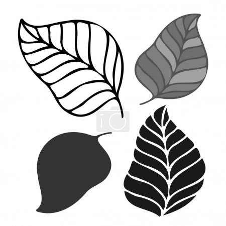 Photo for Isolated vector set of black and white leaves lined and silhouette. The design is perfectly suitable for clothes design, children decoration, stickers, stationary, tattoos. - Royalty Free Image