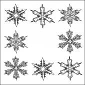Christmas decoration snowflakes vector illustration