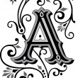 Beautifully decorated English alphabets, letter A...