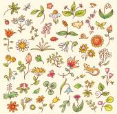 Set of floral design elements herbs and flowers hand drawn no gradients