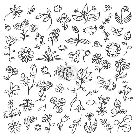 Illustration for Set of floral design elements in a sketchy doodle style, black and white - Royalty Free Image