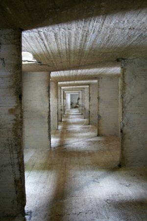 Tunnel fate - 2