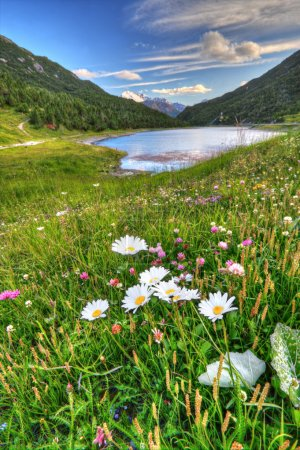 Alpine lake in Italian Alps