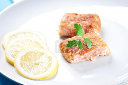 Fillet of salmon on plate