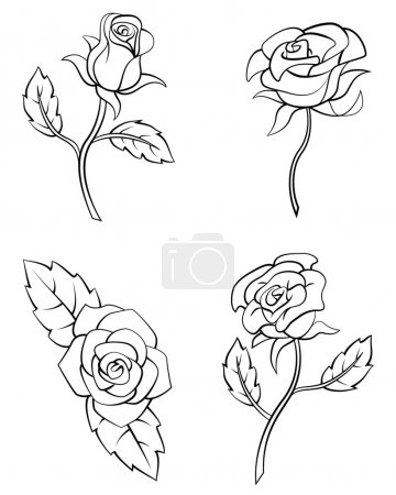 Illustration for Rose Flower Set Collection - Royalty Free Image