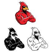 Cardinal Birds Mascot