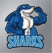 Žraloci maskot