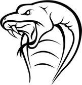 Cobra snake head