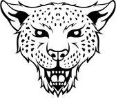 Leopards illustration