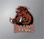 Boar design vector illustration