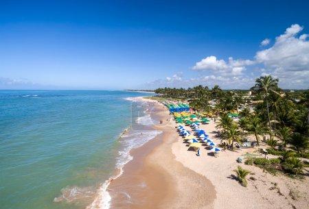 Photo pour Vue Aérienne De La Plage D'itacimirim, Bahia, Brésil - image libre de droit