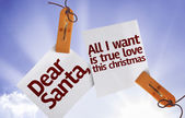 Dear Santa, All I Want is True Love This Christmas on Paper Note